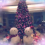 クリスマスツリーが来たよ!♪